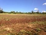 kawailoa Wind Farm 1132 km