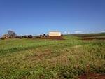 kawailoa Wind Farm 1133 km
